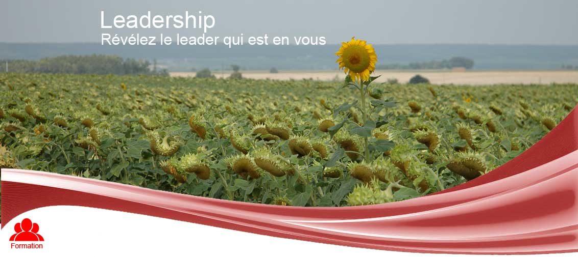 Leadership - Karbon 13 Formations et Coaching